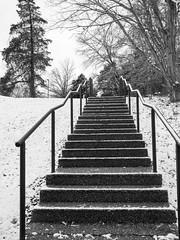 we're barely getting snow (RubyT (I come here for cameraderie!)) Tags: panasoniclumixgx9 lumixgvario1260 stairs snow staircase winter черноеибелое blackandwhite schwarzweiss noiretblanc blancoynegro mono monocromo monochrome bw nb bn