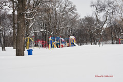 DSE_6481 (pezlud) Tags: 20190223 snow winter winterscenes trollwoodpark fargo nd usa landscape white mantleofwhite seaofwhite dashesofcolor color nochildrenplayingtoday