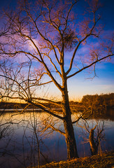 From a distance (Un instant.) Tags: lake 1855mm canon poselongue longexposure colors sunset amazing look nature ngc
