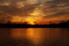 ...sunset on a cold march day (Jim Atkins Sr) Tags: sunset spectacularsunsetsandsunrises cloudsstormssunsetssunrises cloudscape fairfieldharbour northcarolina northwestcreek sony sonyphotographing sonya58 creek