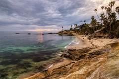 Under a canopy of clouds (tquist24) Tags: california hdr heislerpark lagunabeach nikon nikond5300 pacificocean beach clouds evening geotagged longexposure ocean palmtree palmtrees park rock rocks sand seascape sky sunset tree trees water