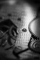 P Machinery (sdupimages) Tags: blackwhite noirblanc noiretblanc macromondays timepieces montre watch bw nb monochrme bokeh