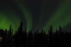 March Madness-152 (juan_guthrie) Tags: yellowknife nwt northernlights