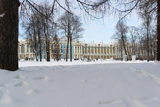 Sunny frosty day. Catherine Palace.