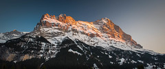 Sunset on the Eiger (Valérie C) Tags: eiger sunset switzerland snow golden nature alp