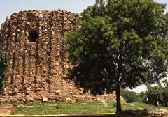 Qutab Minar area (Paolo Levi) Tags: qutab minar delhi trees india canon ftb fd 50mm ilfochrome