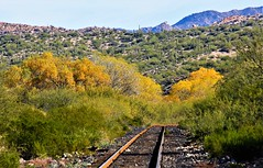 Railroad Colors (Buck--Fever) Tags: canon60d tamron18400lens copperbasinrailway railroad railroadtracks fallcolors arizona arizonadesert arizonawonders desert florencearizona florencekelvinhighway gilariverarizona landscape nature outdoors