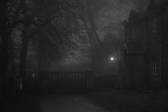 Leave a Light on (graemes83) Tags: pentax fog lyme park national trust mist foggy misty outdoors