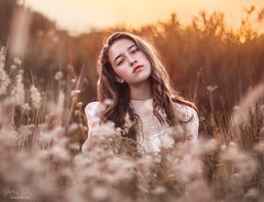 White & Gold ({jessica drossin}) Tags: jessicadrossin woman field flowers light gold white dress hair face wwwjessicadrossincom