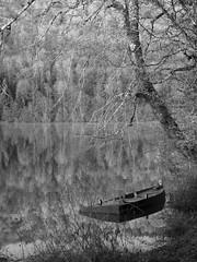 A vau-l'eau (Titole) Tags: boat reflection barque noiretblanc blackandwhite nb bw titole nicolefaton frost brouillardgivrant sinking trees explored