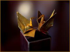 Kanazawa Impressions - Golden Cranes (maco-nonch★R) Tags: kanazawa higashichaya origami traditional art paperfolding oldlens crane golden goldsheets radioactivelens 折り紙 折紙 金沢 東茶屋街 金色 金 bokeh f14