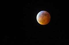 Super Wolf Blood Moon (shawn_christie1970) Tags: plymouth minnesota unitedstatesofamerica us super wolf blood moon space