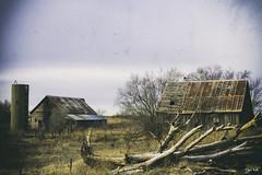 Barns (J K German) Tags: barn kansas barns farm old decay abandoned tree
