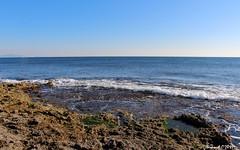 La Méditerranée (Bernard C **) Tags: canon france provence paca provencealpescôted'azur bouchesdurhône saussetlespins mer méditerranée