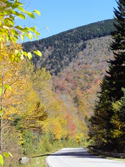 DSC07693 (TerrMys) Tags: northcarolina nc southern appalachians fall autumn october