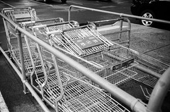 Shopping trolleys (Matthew Paul Argall) Tags: kodakstar500af autofocus 35mmfilm blackandwhite blackandwhitefilm ilforddelta100 100isofilm shoppingtrolley shoppingcart
