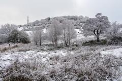 Castle Hill - mono? (Maria-H) Tags: hill snow winter castlehill glossop derbyshire highpeak uk olympus omdem1markii panasonic 1235