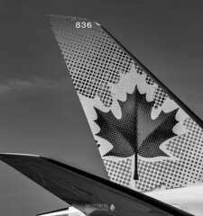 Air Canada (TO416 Original) Tags: 2018 canada mississauga motoroilphotography ontario to416 transport travel tourism touristattraction tourist attractions airport airlines aircanada airplane torontopearsoninternational yyz cfgdx