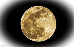 Snow moon. Luna de nieve (A. Muiña) Tags: luna cielo heaven astronmía nikon nikond800 nikon28300mm superluna supermonn moon