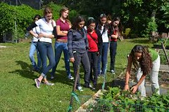 Agricultural courses in Bhopal (ahuja.parul1482) Tags: bestcollegeinmp mbacollegesinmp mbacollegesinbhopal top 10 colleges mp