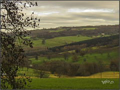 Downhill. . (Picture post.) Tags: landscape nature green winter hills trees jcb fields clouds paysage arbre