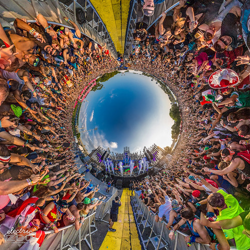 Electric Zoo: Transformed
