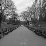 Princes Steet Gardens thumbnail