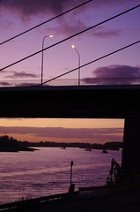 02 Dusseldorf octobre 2018 - le Rhin (paspog) Tags: dusseldorf düsseldorf allemagne deutschland germany octobre oktober october 2018 pont bridge rhin rhine rhein fleuve river fluss