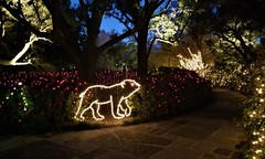 Bellingrath Magic Christmas in Lights (ciscoaguilar) Tags: alabama lights bellingrath theodore christmas