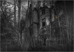 le château dans les arbres (kalzennyg) Tags: urbex decay abandoned gothic dark kalzennyg france