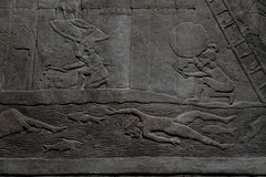 """Swimming with the fishes"" (PChamaeleoMH) Tags: assyrian britishmuseum exhibition frieze london museum relief"