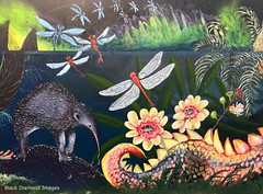 Jurrassic Flora & Fauna - Ages of the Tweed Mural, Commercial Road, Murwillumbah, NSW (Black Diamond Images) Tags: agesofthetweedmural jurassic jurassicperiod megafauna earthlearning mural art painting floodmitigationwall commercialrd commercialroad murwillumbah nsw murwillumbahartstrail appleiphone7plus iphone7plusbackdualcamera iphone7plus phone7plus iphone appleiphonepanorama panorama iphonepanorama appleiphone7pluspanorama smallbolwarra