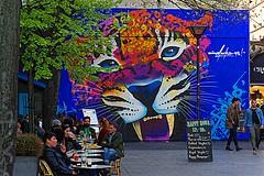 Panthère (Edgard.V) Tags: paris parigi streetart arte urbano urban art callejero mural le mur marko 93 pantera onça panther bar
