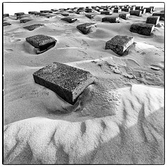 breakwater (look-book) Tags: hasselblad flexbody 2k0604 sand strand texel monocromo monocromatico analogique monochrome theavantgardeisanalogue analogico lookbook analog blackandwhite sw analogous analogue análogo film trix d76 fotos foto analogicas bw self developed blackwhite black white blancoynegro noiretblanc filmisnotdead filmphotography filmcommunity ishootfilm 40mm distagon