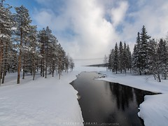 A natural landscape (stefano.sedrani1) Tags: scenery trees forest sky snow winter lake nikon travel beautiful landscape nature lapland finland