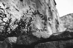 灵山岛2017 (Ryan_Pitou) Tags: ifttt 500px stone cliff sandstone rock formation canyon ravine limestone gorge valley red eroded