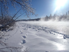 Hiking the Bunny Trails ... (Mr. Happy Face - Peace :)) Tags: snow art2019 fog winter ice cloud sun sky albertabound cans2s hiking outdoors yyc
