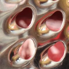 Macro Monday: Holes (rq uk) Tags: rquk nikon d750 nikond750 afsvrmicronikkor105mmf28gifed macro micro nutmeg grater red holes macromondays
