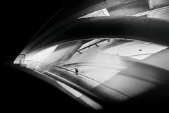 ...anonymous... (*ines_maria) Tags: architecture black white brutalism calatrava candid color commuters concrete copy space europe european futurism futuristic gare do oriente gray horizontal journey linha norte lisboa lisbon transit modern monochrome people perspective photo places portugal public transport railway station rush hour subway train transportation travel travellers travelling tunnel underground urban wide angle worlds passenger bw monochrom light panasonicdcgh5 dcgh5