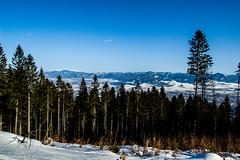 0161_DSC_2596 (marcellszmandray) Tags: kirándulás tél lucskaifátra szlovákia hó fátra