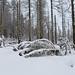 Harz-Oderbrück_e-m10_1012057007
