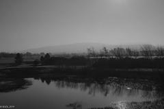 58 ~ 365 (BGDL) Tags: lightroomcc nikond7000 bgdl landscape bwno7~365again nikkor18105mm3556g blackandwhite lochsidehotel cumnock ayrshire mistymorning