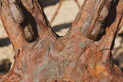 The effects of time... (Dan Elms Photography) Tags: dovercourt dovercourtessex lighthouse sea coastal essex coast seaside beach england canon 5d 100mm macro macrolens rust rusty