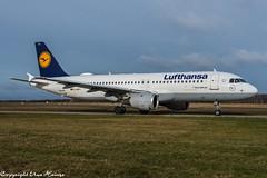 Lufthansa D-AIPY (U. Heinze) Tags: aircraft airlines airways airplane flugzeug planespotting plane haj hannoverlangenhagenairporthaj eddv nikon nikon28300mm d610