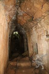 Angkor_Ta Prohm_2014_34