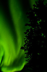 March Madness-121 (juan_guthrie) Tags: northernlights yellowknife nwt aurora