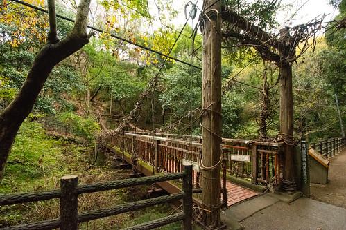 Sarunokazura Bridge