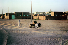 76-347 (ndpa / s. lundeen, archivist) Tags: nick dewolf color photograph 1976 1970s film 35mm 76 reel76 early1976 africa northernafrica northeastafrica sudan thesudan african sudanese khartoum animal donkey mule beastofburden basket baskets carry carrying load sorghum crops building buildings house houses wall stonewall utilitypoles powerlines people man headcovering turban robe whiterobe jalabiya khartoumstate photographbynickdewolf