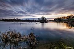 Loire sunset (v.hajek) Tags: loiretcher longexposure loirevalley 41 loire borddeloire coucherdesoleil landscape coursurloire paysage sunset poselongue france fr