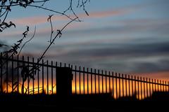 Fence Friday (jillyspoon) Tags: railings sunset fencefriday happyfencefriday hff